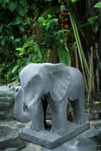 big-elefant