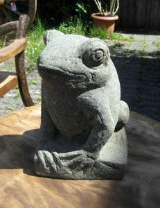 big-frosch