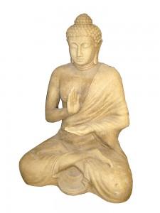 big-sittingbuddharaisin