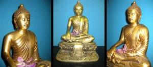 buddhamessing