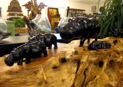 Hippo-Familie