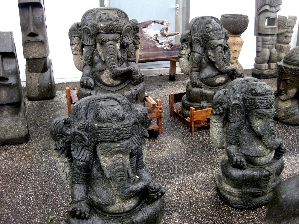 Ganesha, frostsicher