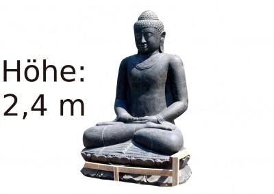 Buddha XXXL