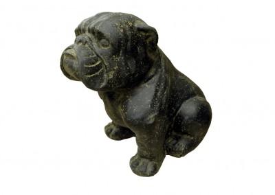 Bulldogge frostsicher
