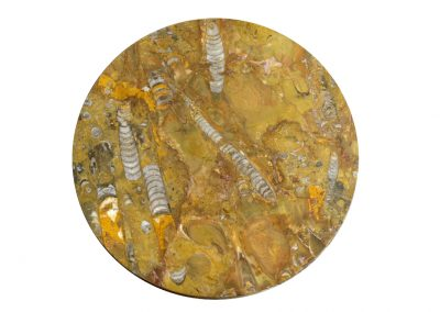 Fossile Platte