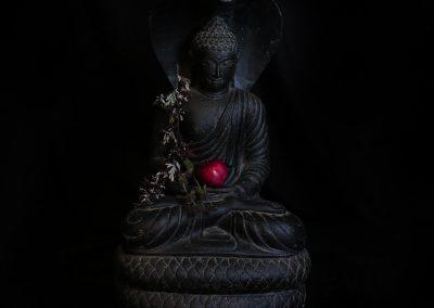 Shelter Buddha