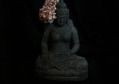 Schutzgöttin Devi Sri