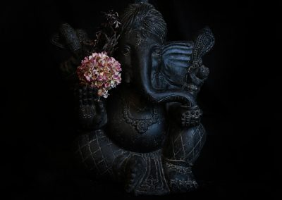 Götterbote Ganesha