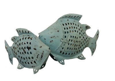 Fisch-Laternen