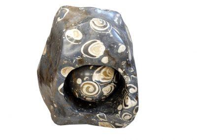 Skulptur aus fossilen Muscheln und Schnecken